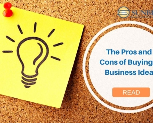 The Pros and Cons of Buying a Business Idea